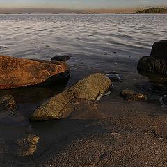 """фото """"Stones"""""""