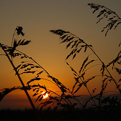 "photo ""Sunrise&wind"""