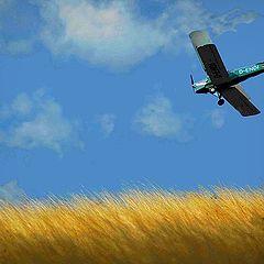 "photo ""flight over field"""