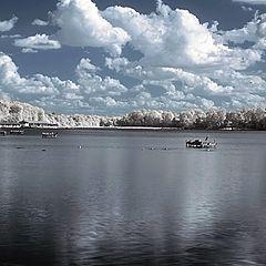 """фото """"the lake"""""""