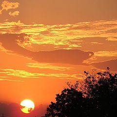 "фотоальбом ""sunset, sunrise"""