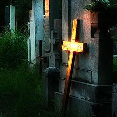 "фото ""shine on cemetery"""