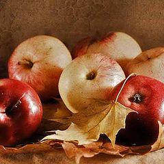 "фото ""Яблочная осень"""