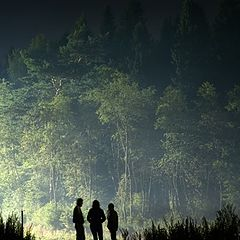 """photo """"Three forest dwellers"""""""