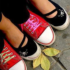"photo ""Paints of autumn"""