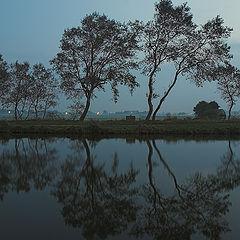 "photo ""Reflection…"""