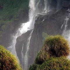 """фото """"Iguacu falls"""""""