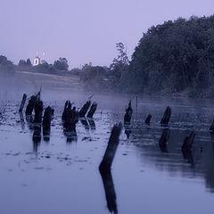 """photo """"Lilac fog"""""""