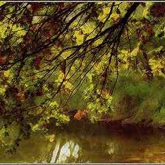 """фото """"Осень рисует.."""""""