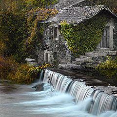"""photo """"Autumn Painting"""""""