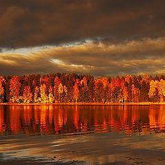 "photo ""ISLAND IN THE SUN"""