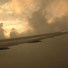 "photo ""Above a wing"""