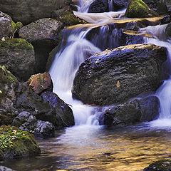 """photo """"Magic of water-1"""""""