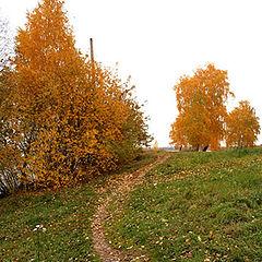 """фото """"осенью...к озеру..."""""""
