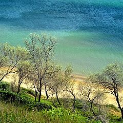 "photo ""Blue-green Black sea"""
