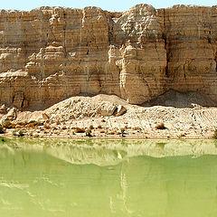 """photo """"Green water of desert"""""""