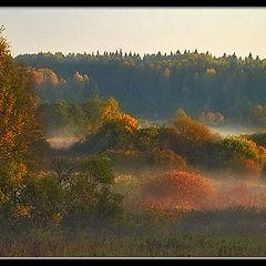 """photo """"In beams of an autumn dawn"""""""