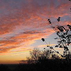 "photo ""The reflection of sunset"""