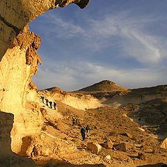 "photo ""The gold of the Negev"""