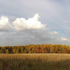 """фото """"Осеннее небо"""""""
