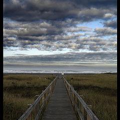 "фото ""Path of Life"""