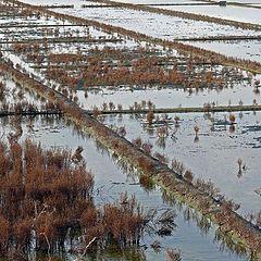 "фото ""saline marshes"""