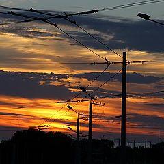 """фото """"Троллейбус на закат"""""""