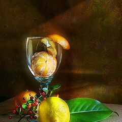"photo ""etude con limon y mandarinas"""