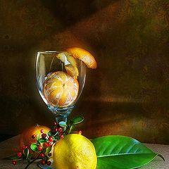 """фото """"этюд с лимоном и мандаринами"""""""