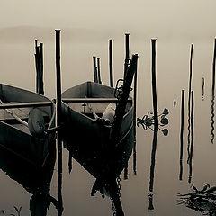 "фото ""By the lake"""