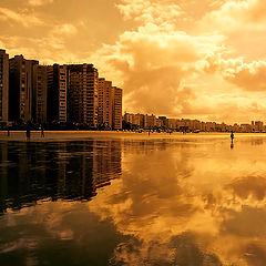 """фото """"Golden Light"""""""