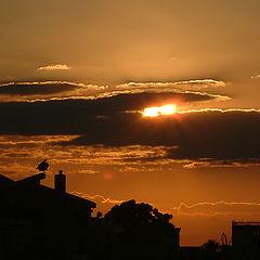 "фото ""North Cyprus Sunset!!"""