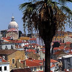"""фото """"Lisboa"""""""