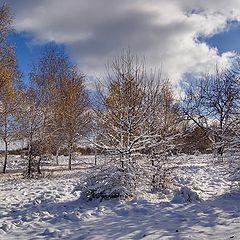 """фото """"Первый день снега_2"""""""