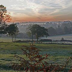 "фото ""Frozen autumn morning"""