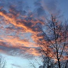 """photo """"The woken up heavens"""""""