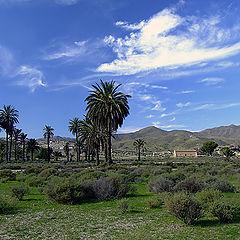 """фото """"Desert of Cabo de Gata 2"""""""