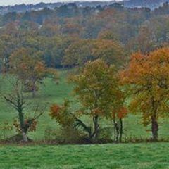 "фото ""November in Limousin"""