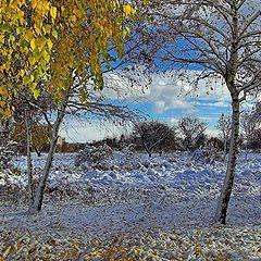 """фото """"Первый день снега_3"""""""
