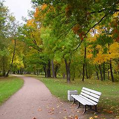 "фото ""Петергоф. Парк Александрия"""