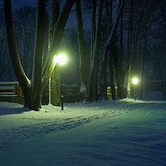"""фото """"Ночной парк"""""""