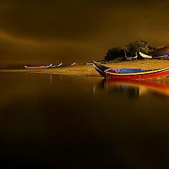 "фото ""In the night"""