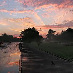 """фото """"Рано - рано утром"""""""