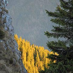 """photo """"Winter in Romania"""""""