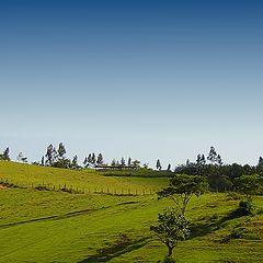 """photo """"Fields of green II"""""""
