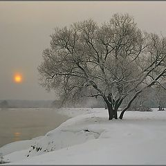 "photo ""Frosty morning"""