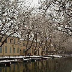 """photo """"Cold Winter"""""""