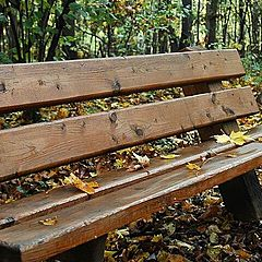 """фото """"Осеннее настроение..."""""""