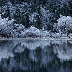 """фото """"Winter?"""""""