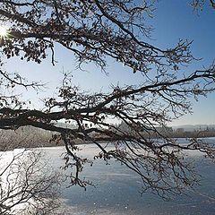 "фото ""Winter dream"""
